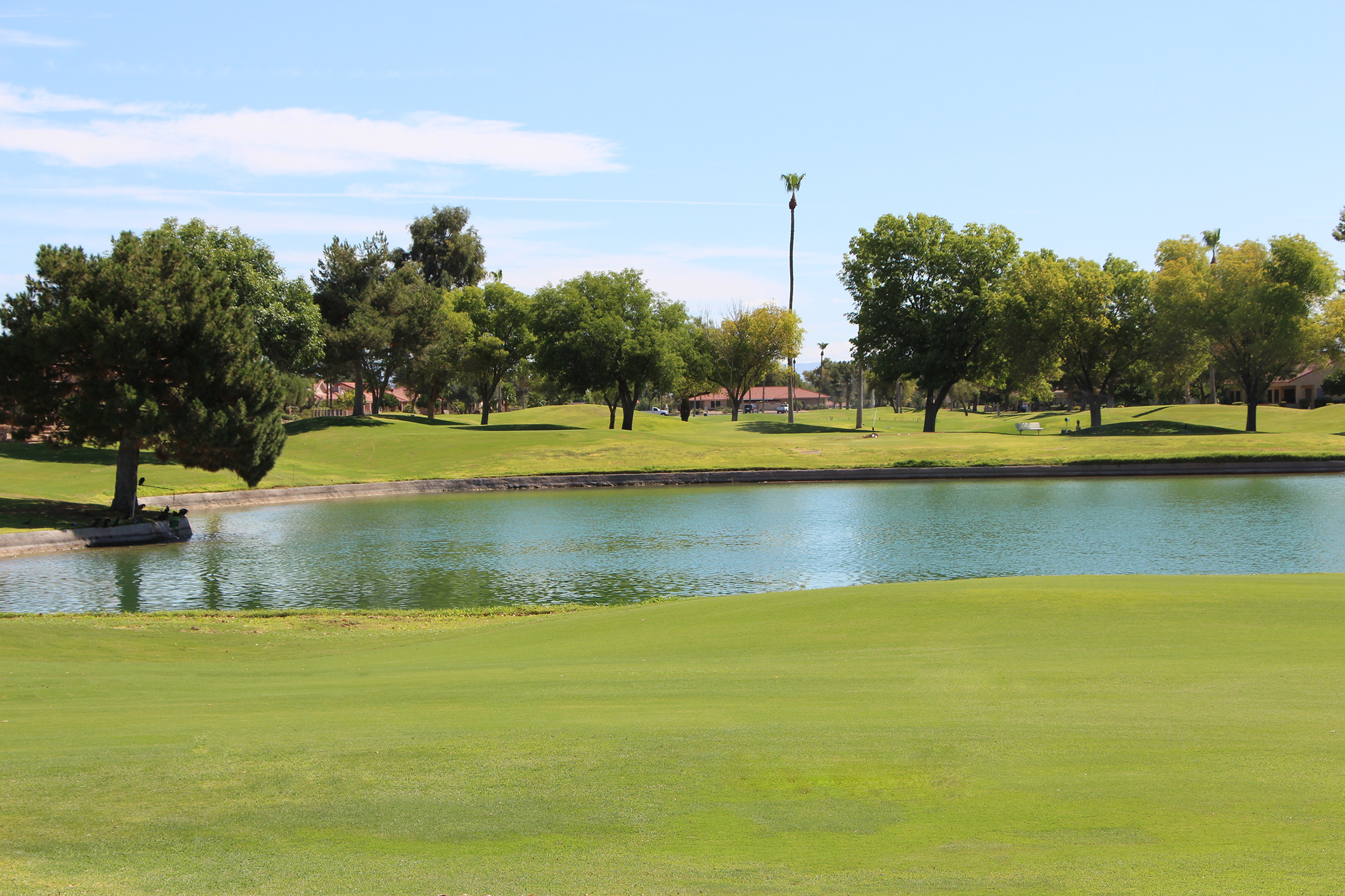 Green Team to host First Swing Clinic at Echo Mesa