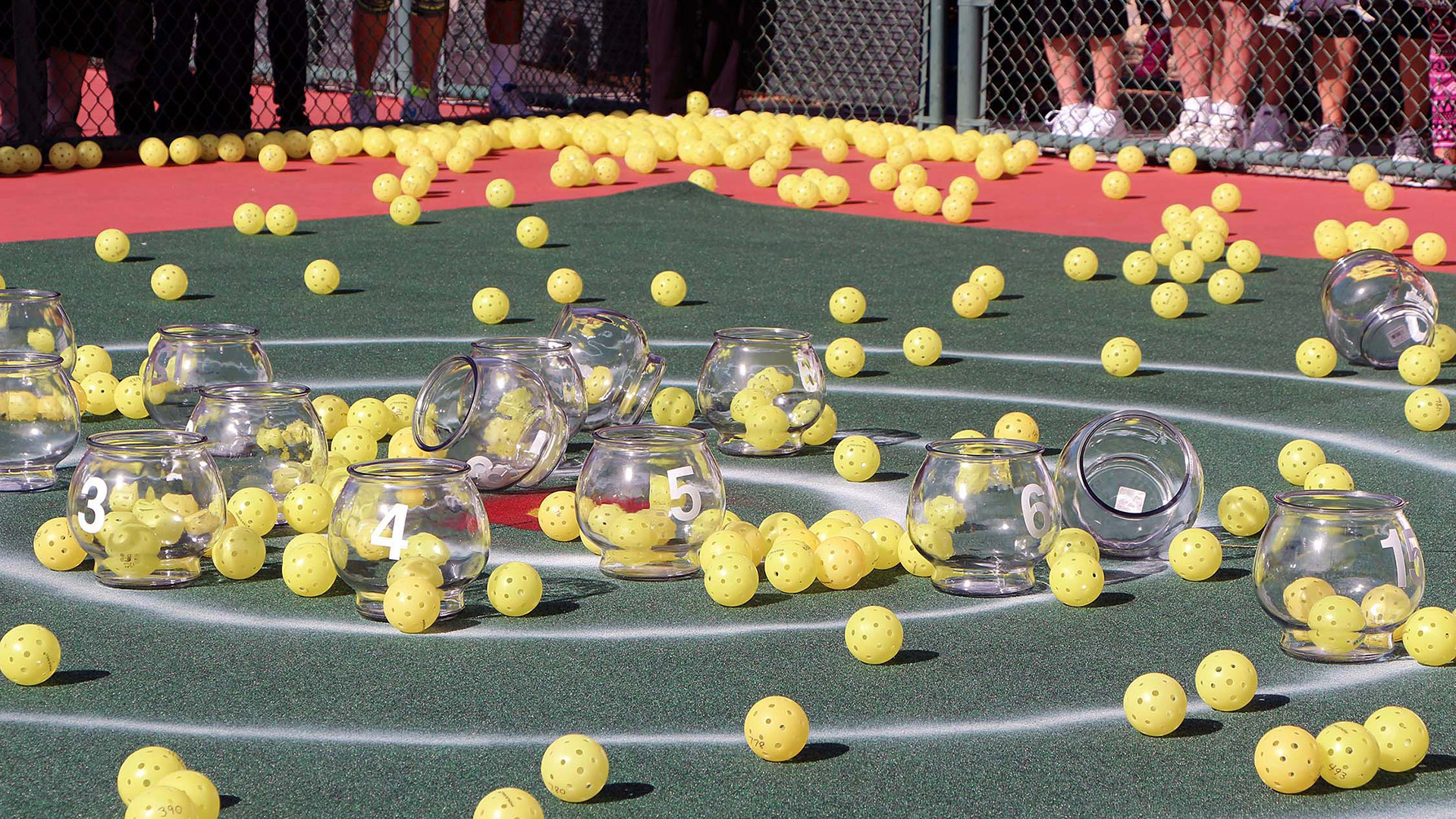 Look out below! Pickleballs to fall for charity this January